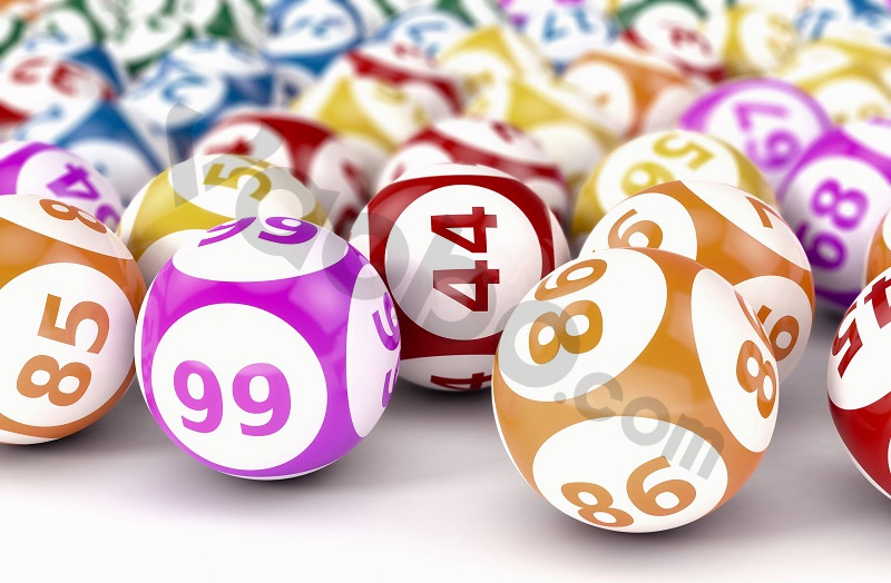 Number-Game-luon-duoc-anh-em-cuoc-thu-ua-chuong